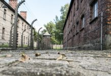 How to Get to Auschwitz From Krakow