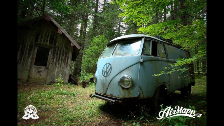 The Story of a VW Bus Forgotten in the Wild for 40 Years