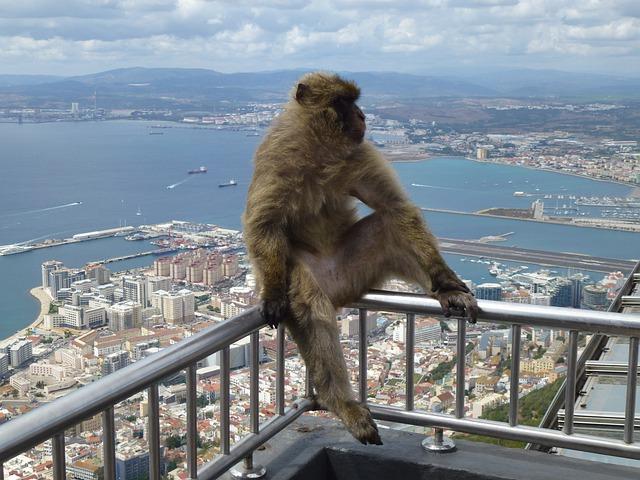 spain road trip gibraltar