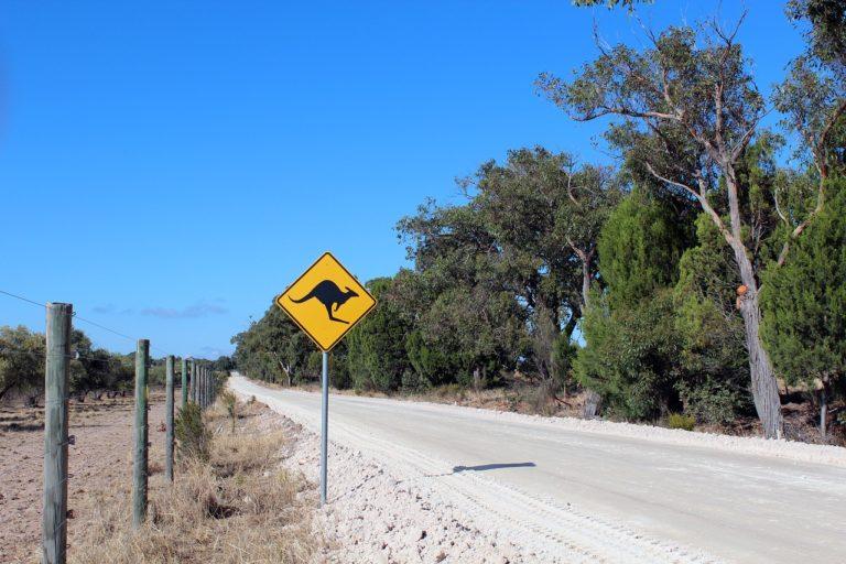 The No. 1 East Coast of Australia Road Trip Itinerary